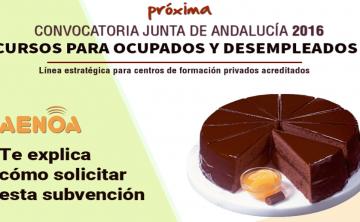 Curso técnico 'Subvenciones 2016 de formación de oferta estatal y autonómica Junta de Andalucía'. Sevilla, 17 de junio.