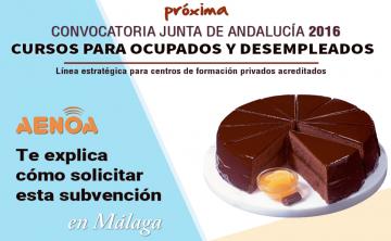 Curso técnico 'Subvenciones 2016 de formación de oferta estatal y autonómica Junta de Andalucía'. Málaga, 14 julio.