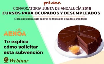 Webinar: 'Subvenciones 2016 de formación de oferta Junta de Andalucía' 28 de julio.
