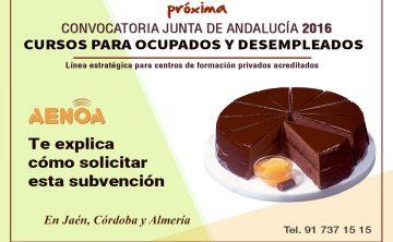 Curso técnico 'Subvenciones 2016 de formación de oferta estatal y autonómica Junta de Andalucía'