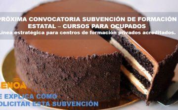 Webinar: Convocatoria de Subvención Estatal – Cursos para Ocupados. 13 y 15 febrero.